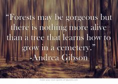 """Forests may be gorgeous but there is nothing more alive than a tree that learns how to grow in a cemetery."" -Andrea Gibson"