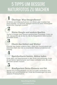 Infografik: 5 Naturfotografie Tipps für bessere Naturfotos. #naturfotografie #fotografie #tipps