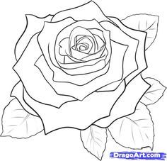 How to Draw a Rose Bud, Rose Bud, Step by Step, Flowers, Pop ...