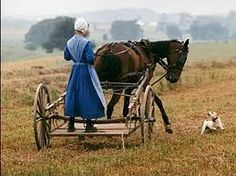 Amish Farmer Girl
