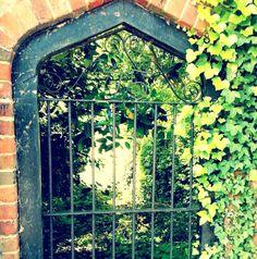 """""""In a secret garden :)"""" from @lexinou taken on piictu.com"""