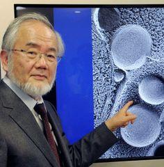 Ohsumi ganhou o Nobel de medicina    Não é dieta ou regime. Os cientistas estão pesquisando como o jejum ou o corte radical de calorias po...