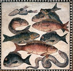 Roman fish mosaic, 1st century AD - British Museum.  Probably depicting commonly consumed species.  Squid in upper left.