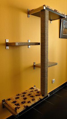 Cat Room In House. Cat Climber, Espace Design, Diy Cat Tree, Cat Shelves, Ikea Shelves, Cat Playground, Playground Ideas, Cat Enclosure, Cat Room