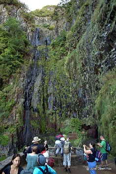 3 Magical Walks in Madeira - via Julie Dawn Fox 18.06.2015 | If you know anything about Madeira island, you've no doubt heard its a paradise for walkers. It really is. Better still, you can pick a walk that suits your fitness level... Photo: Tour group at Risco waterfall, Madeira