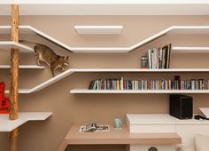 The Custom Shelving In This Home Keeps The Cat Happy