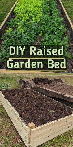 Backyard Vegetable Gardens, Vegetable Garden Design, Garden Landscape Design, House Landscape, Vegetables Garden, Potager Garden, Gardening For Beginners, Gardening Tips, Urban Gardening