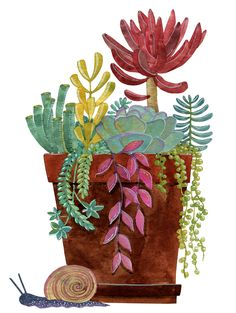 really cool drawings Art And Illustration, Illustration Cactus, Illustration Botanique, Cactus Drawing, Cactus Painting, Cactus Art, Watercolor Succulents, Watercolor Flowers, Watercolor Art