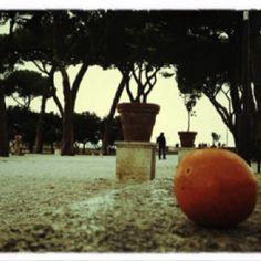 Giardino degli aranci/Roma
