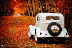 Vintage wedding car | wedding, autumn, vintage, car, leaves, golden , trees…