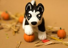 This little guy is for sale on etsy www.etsy.com/listing/206186312… Here is a black husky pup with some pumpkins! The Autumn theme was fun to make. His sister will be uploaded soon He is aro...