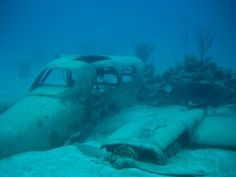 I am interested un the Bermuda Triangle I have been wanting to study it for a while now i think i finally will What they Said. Real Pictures of the Bermuda Triangle Abandoned Ships, Abandoned Buildings, Abandoned Places, Costa, Trains, Underwater City, Beneath The Sea, Under The Ocean, Unexplained Mysteries