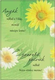 Gabriel Garcia Marquez, Mother's Day Diy, Rainbow Dash, Diy And Crafts, Happy Birthday, Flowers, Gifts, Filofax, Mothers