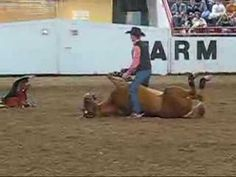 WATCH THIS!  I saw Josh do this at a horse clinic during Horse Fest, too cute.  Tommy Turvey + Josh Lyons