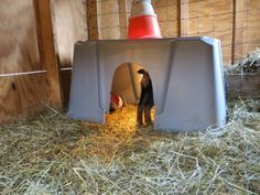 Baby Goats in Coats   How To Keep The Kids Warm - Goat Housing- #babygoatfarm