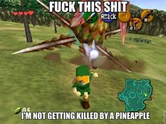 Legend of Zelda humor