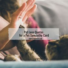 Pet loss quotes about the loss of a dog or a cat. These are great to add to a pet sympathy card or even just a blank card. If you're looking for free printable cards, we have those! These quotes can be added to our printable cards or used to create an e-card.