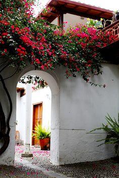 Wonderful Ecuador http://www.travelandtransitions.com/destinations/destination-advice/latin-america-the-caribbean/