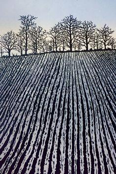 Ploughed Field: fields in winter, frosty field, plough marks, English landscape, bare trees Ploughed Winter Landscape, Landscape Art, Landscape Paintings, Gravure Illustration, Illustration Art, Linocut Prints, Art Prints, Block Prints, Gravure Photo