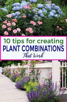 Flower Garden These tips for creating plant combinations in your yard will help make your garden landscaping look beautiful. Great ideas for updating your garden design with beautiful flowers, bushes and perennials. Pruning Plants, Garden Plants, Shade Garden, Gardening For Beginners, Gardening Tips, Organic Gardening, Vegetable Gardening, Gardening Magazines, Gardening Services