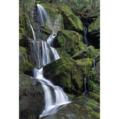 Thousand Drips Waterfall Roaring Fork Area Great Smoky Mountains National Park Tennessee Usa Canvas Art - Natural Selection Robert Cable Design Pics (12 x 18)