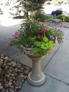 pinterest flower pots | Summer flower pots | garden ideas | Pinterest