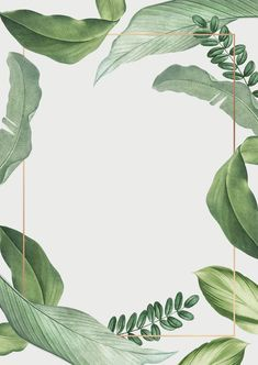 premium illustration of Hand drawn tropical leaves white poster Hand drawn tropical leaves white poster vector Flower Background Wallpaper, Framed Wallpaper, Leaf Background, Flower Backgrounds, Background Patterns, Wallpaper Backgrounds, Iphone Wallpaper, Tropical Background, Vector Background