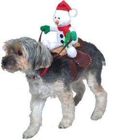 Christmas Snowman Rider Dog Costume
