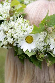 Daisies Flower Hair, Flowers In Hair, Yellow Cottage, Daisy Mae, Queen Annes Lace, Daisy Chain, Zinnias, Daisies, Dahlia