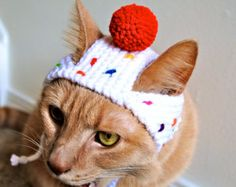 Cupcake Costume for Cats - Hand Knit Cat Hat - Cat Halloween Costume