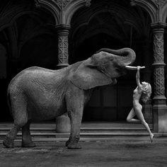 © Marc Lagrange