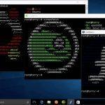 Les distributions Linux Ubuntu SUSE et Fedora arrivent sur le Windows Store