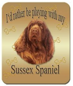 Sussex Spaniel Mouse Pad