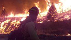 forest fires near markleeville ca | firefighter watches the fire line as the elk complex fire burns near ...