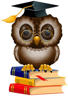 Owl with School Books and Cap PNG Clipart Image
