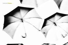 umbrella by Larisa Bajec on 500px