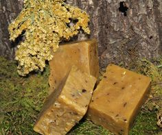 Goldmine Loop soap contains an Appalachian species of goldenrod known to be a wound healer.  <!-- Google Plus One--> <!-- Facebook like--> <!-- Twitter-->