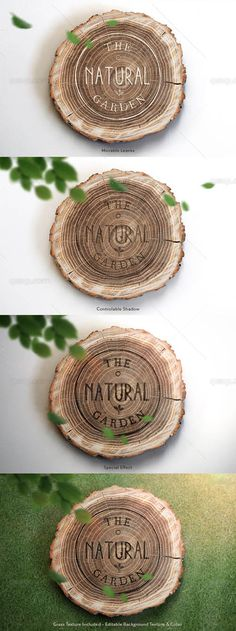 Logo Mock up on Cut Tree PSD Template » Free Special GFX Posts Vectors AEP Projects PSD Web Templates | HeroGFX.com