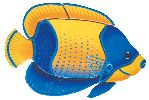 Majestic Angelfish ceramic tile mosaic