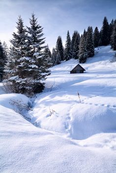 Old wooden hut in the snowy mountains (Bavarian Alps, Germany) by Olha Rohulya on Winter Cabin, Winter Love, Winter Snow, Winter Photography, Nature Photography, Travel Photography, Wooden Hut, Winter's Tale, Winter Photos