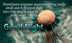 Good night msg images, good night sms and night messages Good Night Msg, Sweet Good Night Messages, Lovely Good Night, Beautiful Good Night Images, Good Night Friends, Good Night Wishes, Good Morning Good Night, Good Night Quotes, Morning Quotes