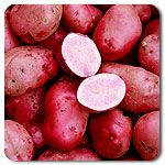 Organic All Red Potato