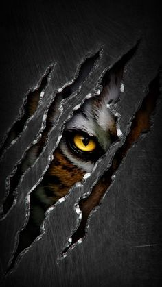 Predator Eye - iPhone Wallpapers