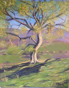Tree study oil on canvas by CarolineBuntonArt