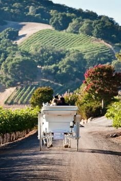 Napa Valley Carriage Ride