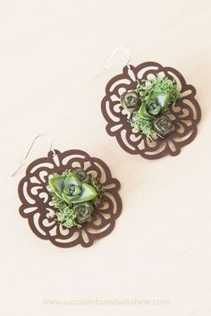 Glue real succulents onto earrings to make a statement with your jewelry!