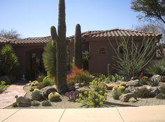 Striking Arizona Xeriscaping Landscaping