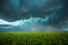 Title:  April Showers.  A brilliant turquoise sky over a lush green field in northeastern Kansas.