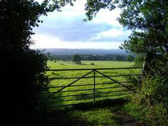 Devon countryside - Google Search