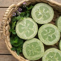 Cucumber Mint Loofah Soap - recipe from the Soapmaking Success course. Includes 25 videos, 8 helpful downloadable guides and lots of fun creative recipes!